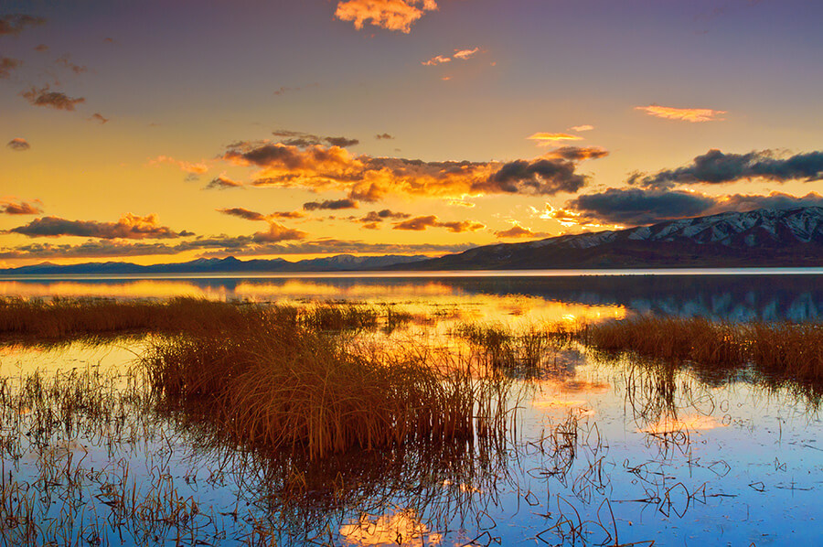 Blue Reflection - 20 x 30 lustre print by Tanner Young
