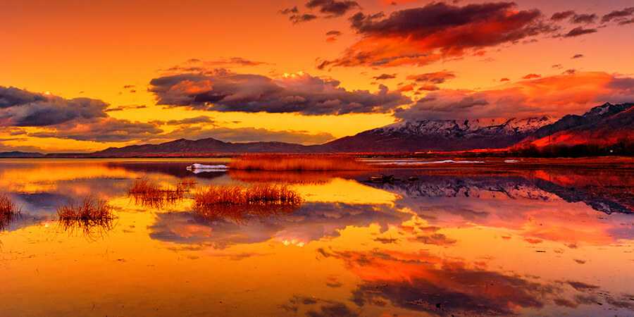 Total Reflection - 16 x 32 print by Tanner Young