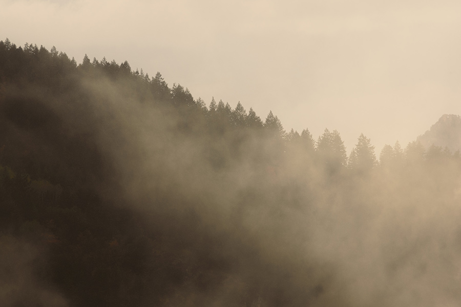 Through the Mists - 16 x 24 giclée on canvas (pre-mounted) by Tanner Young