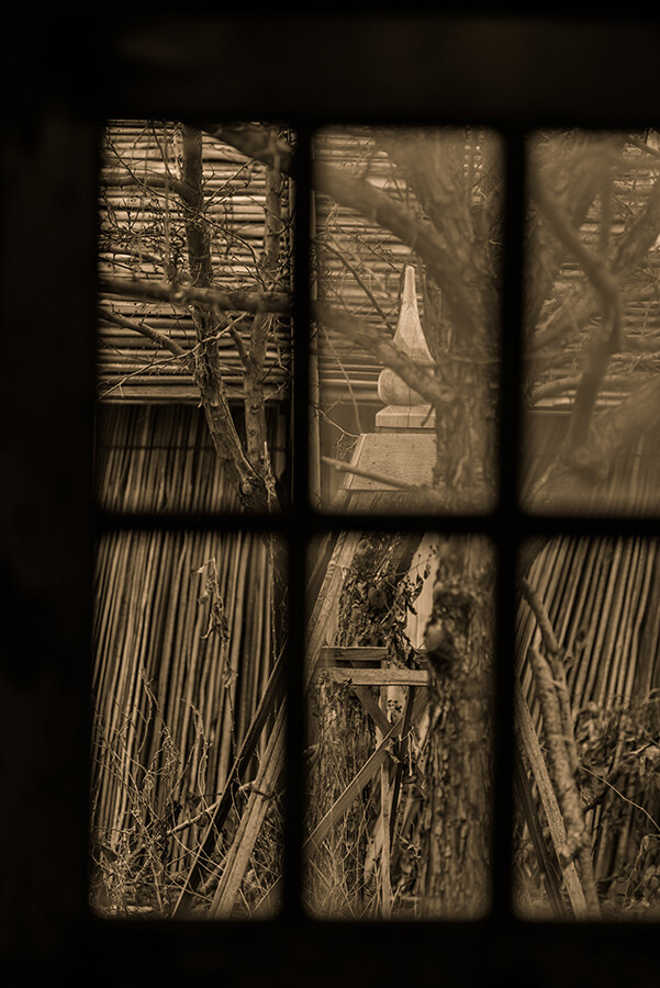 Through the Window - 30 x 40 lustre print by Tanner Young
