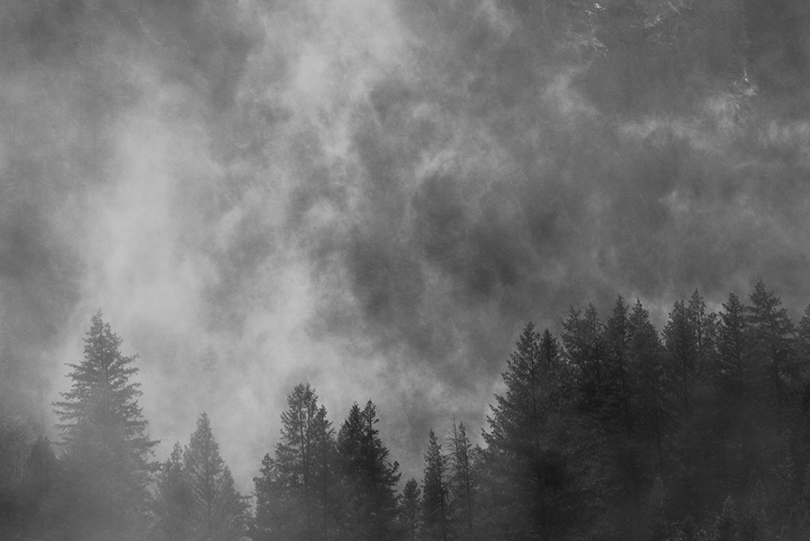 Alpine Mists - 20 x 30 giclée on canvas (unmounted) by Tanner Young