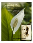 Vol. 9 No. 3 - A Kenneth Grahame Springtime