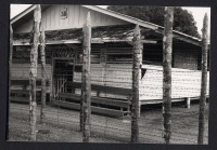 Fence and Barracks at the Davao Penal Colony, no. 2