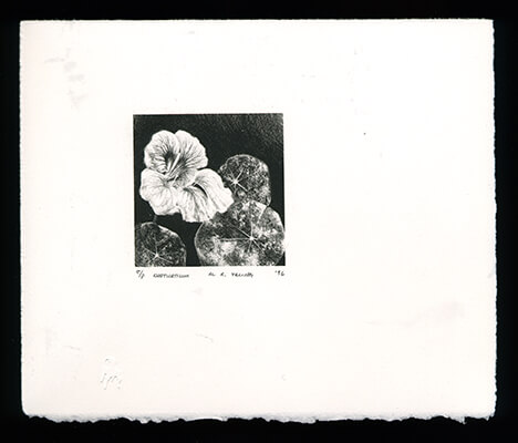 Nasturtium - Limited Edition Lithography Print by Al Young