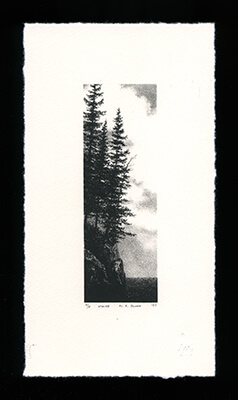 Maine - Limited Edition Lithography Print by Al Young