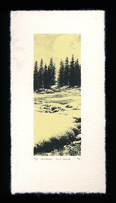 Meadow - Limited Edition Lithography Print by Al Young