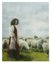 With Her Father's Sheep - 11 x 14 print