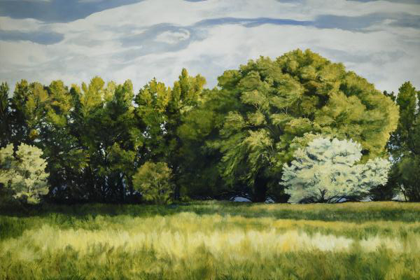 Green And Pleasant Land - 24 x 36 giclée on canvas (unmounted) by Ashton Young
