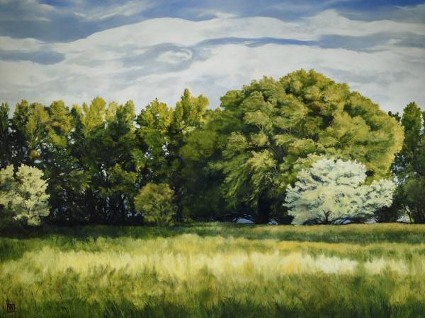 Green And Pleasant Land - 30 x 40 giclée on canvas (unmounted) by Ashton Young