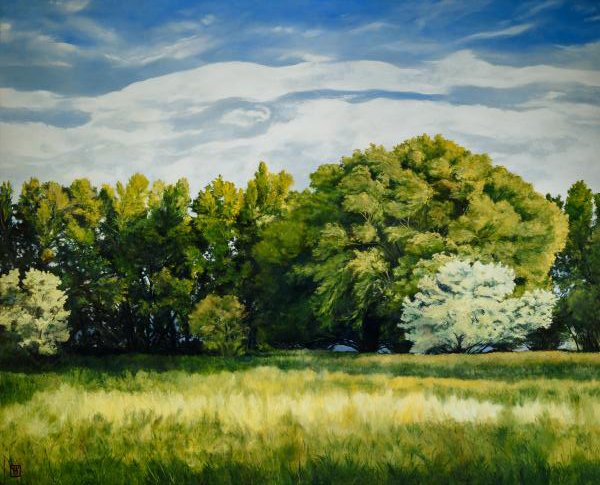 Green And Pleasant Land - 18 x 22.375 giclée on canvas (pre-mounted) by Ashton Young