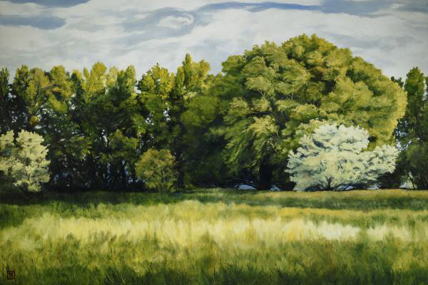 Green And Pleasant Land - 20 x 30 giclée on canvas (unmounted) by Ashton Young