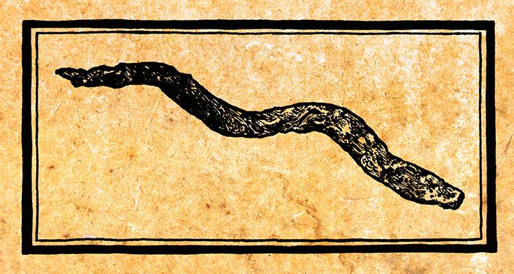 Symbol for the Tribe of Dan