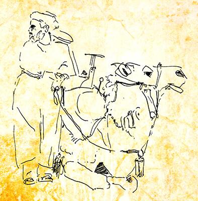 Man Beside Kneeling Camel