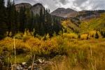 Mountain Brook