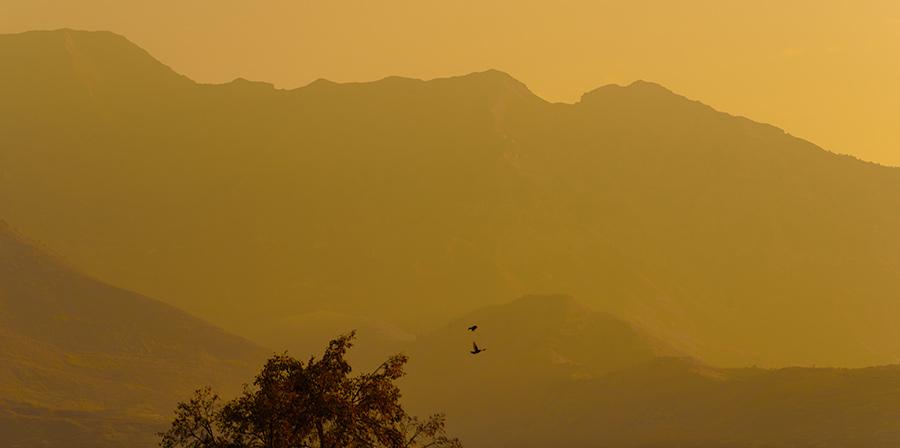 Morning Haze