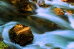 Water Motion