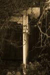 Arbor - 8 x 12 giclée on canvas (pre-mounted)