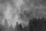 Alpine Mists - 8 x 12 giclée on canvas (pre-mounted)