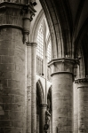 Cathedral Aisle - 8 x 12 giclée on canvas (pre-mounted)