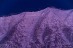 Deep Winter - 8 x 12 giclée on canvas (pre-mounted)